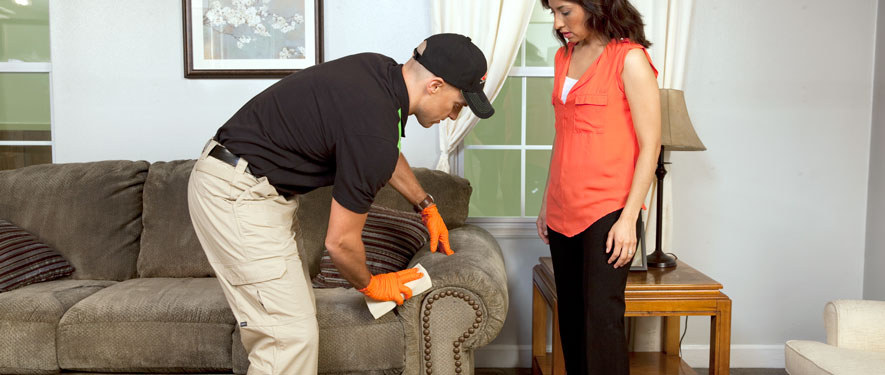 Ames, IA carpet upholstery cleaning